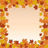 Leaf Border Frame - Fall Stock Images