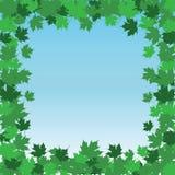 Leaf Border Frame - Summer Stock Image