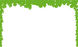 Leaf Border. A leaf style page border over a white background Stock Images
