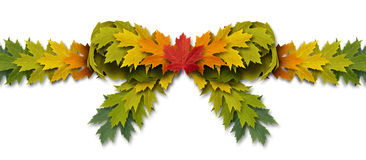 Leaf Bow Ribbon Royalty Free Stock Images
