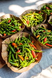 Leaf Bowls filled with red and green Chillies Royalty Free Stock Photo