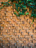 Leaf and brick backgound. Leaf wall orange brick background Stock Photo