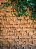 Leaf and brick backgound Stock Photo