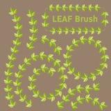 Leaf brushes Stock Image