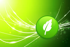 Leaf Button on Green Abstract Light Background Royalty Free Stock Image