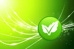 Leaf Button on Green Abstract Light Background Stock Photography