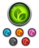 Leaf button icon. Glossy leaf button icon set in 6 colors Royalty Free Stock Photography