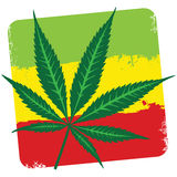 Leaf of cannabis (marijuana) and flag of Ethiopia isolated on wh Stock Photography