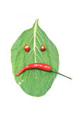 Leaf and chili, scowl. Leaves and chili paste a scowl face shape Royalty Free Stock Image