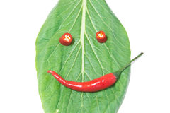 Leaf and chili, smile Stock Images