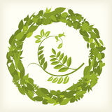 Leaf circle (vector) Royalty Free Stock Photos
