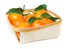 Leaf clementines in basket Royalty Free Stock Photo