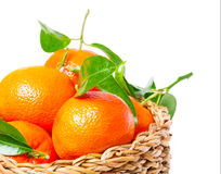Leaf clementines in basket Royalty Free Stock Photos