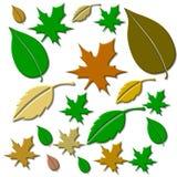 Leaf, Clip Art, Flower, Plant royalty free stock photos