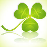 Leaf Clover on St. Patrick's Day Royalty Free Stock Photo