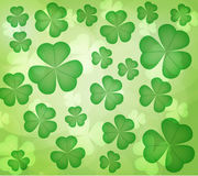 Leaf clover Stock Photo