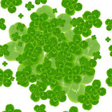 Leaf clover symbol of good luck Royalty Free Stock Photos