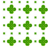 Leaf clover symbol of good luck Royalty Free Stock Photography