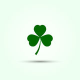 Leaf clover on a white background Royalty Free Stock Photos