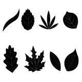 Leaf collection - vector silhouette Stock Image