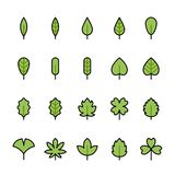 Color line icon set of Leaf vector illustration