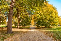Colorful Path in Lincoln Park Chicago during Autumn royalty free stock photography