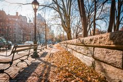 A leaf-covered sidewalk in New York stock images