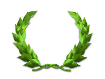 Leaf crest. A green leaf crest on white background - 3d render Royalty Free Stock Photography