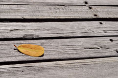 Leaf on a deck. Yellow leaf on a wooden deck Stock Photo
