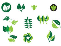 Leaf designs. Graphical logo elements that can be used for company branding Stock Photos