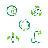 Leaf designs Royalty Free Stock Photography