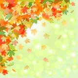 leaf för fall för konsthöstbakgrund digital Arkivfoto