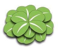 leaf för växt av släkten Trifolium fyra vektor illustrationer