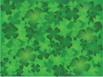 leaf för växt av släkten Trifoliumdesign fyra Arkivfoton