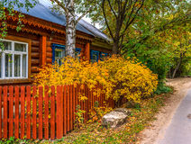 Leaf fall_house. Old wood house surrounded by trees and yellow shrubs near the road in autumn Royalty Free Stock Image
