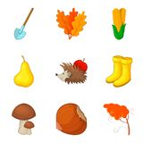 Leaf fall icons set, cartoon style Royalty Free Stock Images