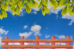 Leaf and fence. Blue sky background stock images