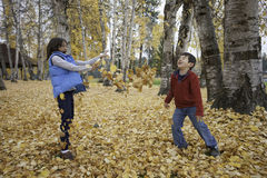 Leaf fight. Royalty Free Stock Photo
