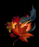 Leaf in fire. Realistic brown autumn maple leaf in fire on black background Stock Photo