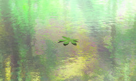 Leaf Floating Calm Water Scene Background Stock Images