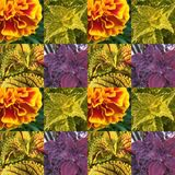 Leaf and flora pattern royalty free stock photography