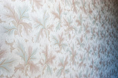 Leaf floral background Stock Photography