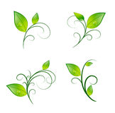 Leaf Floral Decoration Set Royalty Free Stock Photos