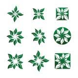 Leaf and Flower Vector Illustrations. Nine Various Leaf and Flower Vector Illustrations stock illustration