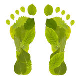 Leaf Footprint Royalty Free Stock Photos