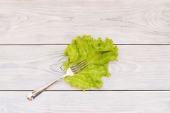 Leaf and Fork Stock Photos