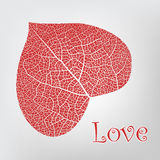 Leaf in the form of heart, a love symbol Stock Images