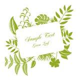 Leaf frame. Green leaf frame. Illustration Royalty Free Stock Image