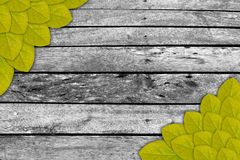 Leaf frame Royalty Free Stock Images