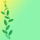 Leaf of frame. On color background Stock Photo